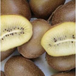 kiwi jaune piece